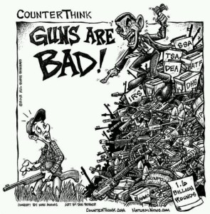 The idea that firearms will protect the individual from tyranny continues in US politics. See this cartoon, reproduced on NaturalNews.com. (Source)